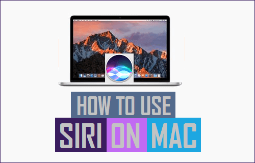 How to Use Siri On Mac