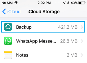 Backup Option on iCloud Storage Screen on iPhone