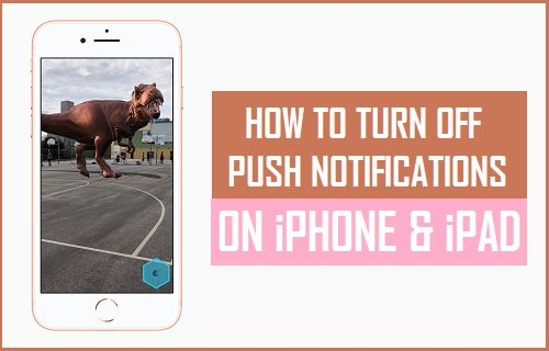 Turn Off Push Notifications on iPhone and iPad