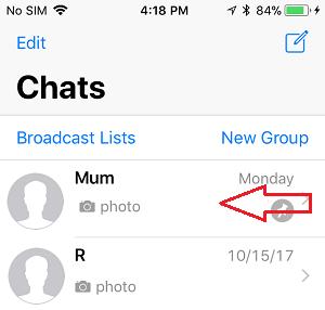 Access WhatsApp Slide-Over Menu on iPhone