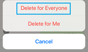 Delete For Everyone Option in WhatsApp