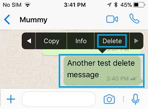 Select WhatsApp Message to Delete