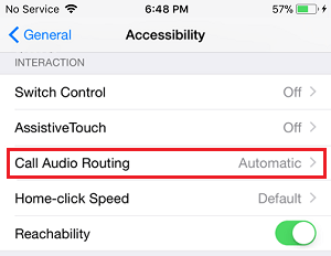 Call Audio Routing Tab on iPhone Accessibility Screen