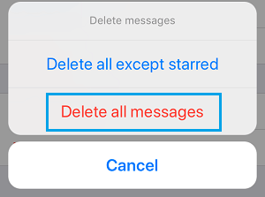 Delete All Messages Option in WhatsApp On iPhone