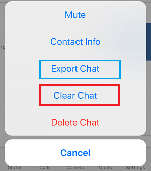 Clear Chat Option in WhatsApp on iPhone