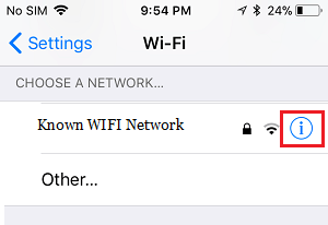 WIFI Network Properties Icon on iPhone