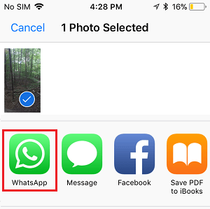 Share Photos Using WhatsApp on iPhone