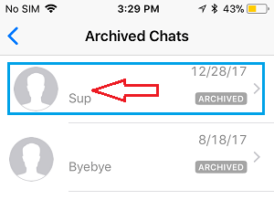 Archived Chats Screen on iPhone