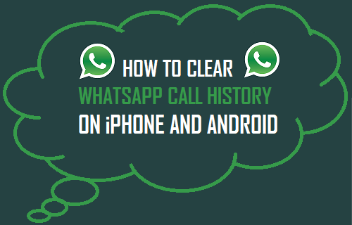 Clear WhatsApp Call History On iPhone and Android