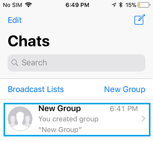 Open Group Chat in WhatsApp on iPhone