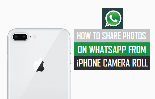 Share Photos On WhatsApp From iPhone Camera Roll