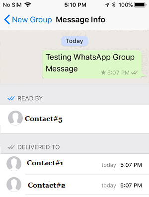 Read By and Delivered To Status on WhatsApp Group Info Screen on iPhone