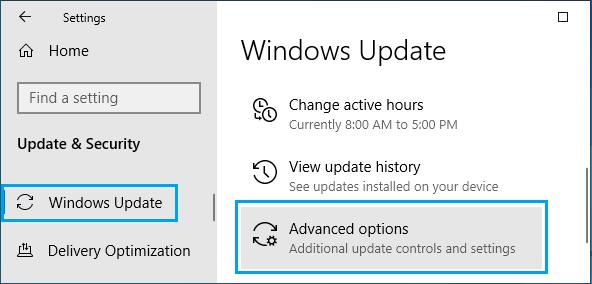 Windows Update Advanced Option