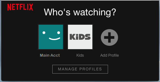 Add Profile Option in Netflix