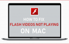 How to Fix Flash Videos Not Playing on Mac