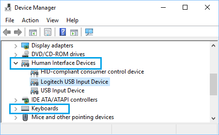 Logitech Wireless USB Keyboard Receiver on Device Manager Screen