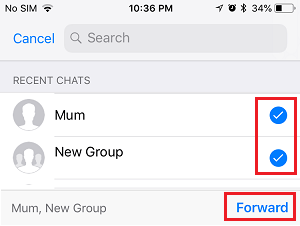 Forward Photos to Selected Contacts in WhatsApp iPhone