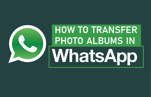 Forward Photo Album in WhatsApp iPhone and Android