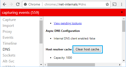 Clear Host Cache in Chrome