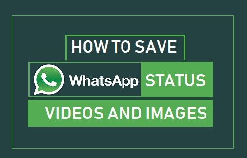 How To Save Whatsapp Status Videos And Images