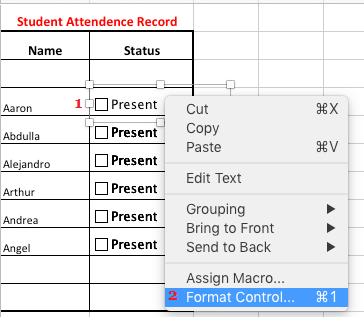 Format Check Boxes in Excel