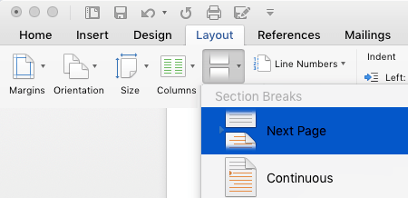Insert Next Page Break in Word Document