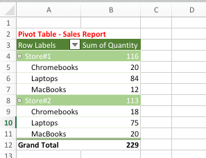Pivot Table Showing Grand and Subtotals