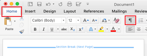 View/Hide Page Breaks Option in Word