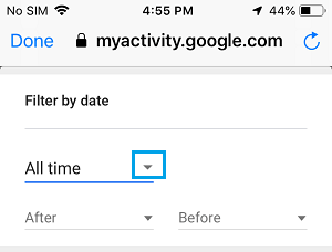 Filter Google History by Date on iPhone