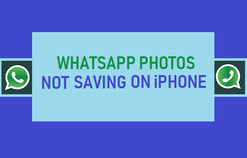 WhatsApp Photos Not Saving on iPhone