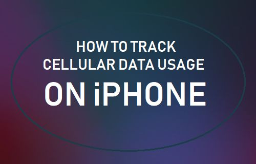 Track Cellular Data Usage on iPhone