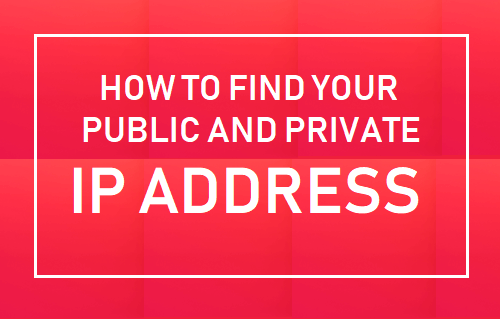 Find Your Public and Private IP Address