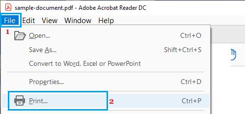File Print Option in Adobe Acrobat