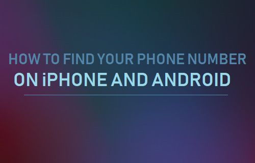Find Your Phone Number on iPhone and Android