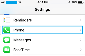 Phone Option on iPhone Settings Screen