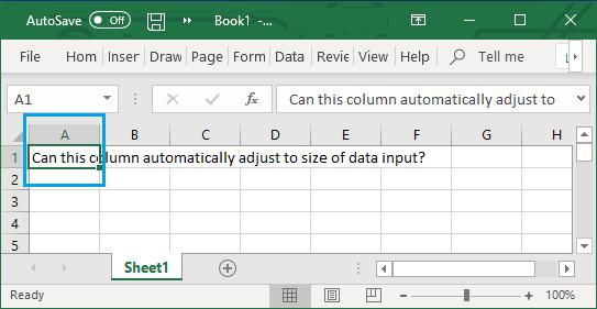 Data Overflowing Column Width in Excel