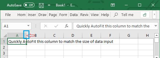 Quickly AutoFit Column Width in Excel