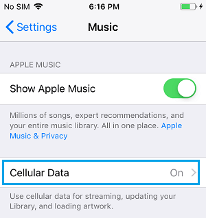 Cellular Data For Music Option on iPhone