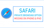 Safari Private Browsing Option Missing on iPhone or iPad