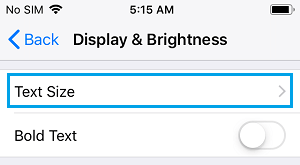 Text Size Settings Option on iPhone