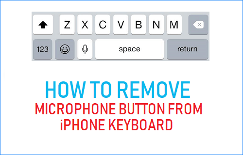 How to Remove Microphone Button From iPhone Keyboard