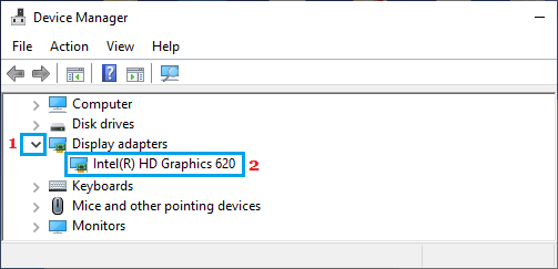 Graphics Card on Device Manager Screen
