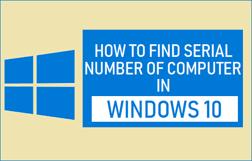 Find Serial Number of Computer in Windows 10