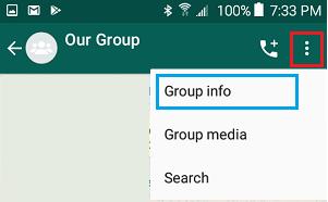 Open WhatsApp Group Info