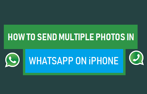 Send Multiple Photos in WhatsApp on iPhone