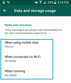 WhatsApp Media Auto Download Settings