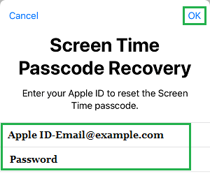 Enter Apple ID and Passcode to Reset Screen Time Passcode