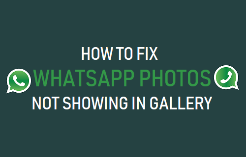 Fix WhatsApp Photos Not Showing in Gallery