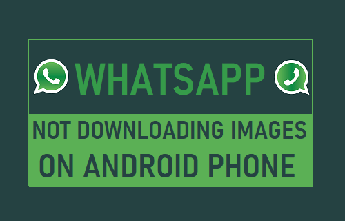 WhatsApp Images Not Downloading on Android Phone