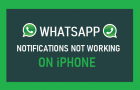 WhatsApp Notifications Not Working on iPhone